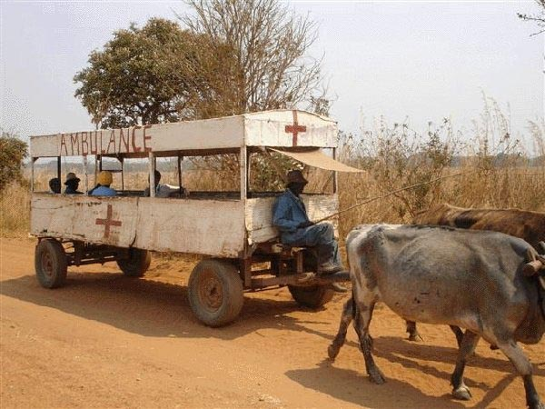 Weekend Fun - Funny things of Africa - Bullock cart ambulance