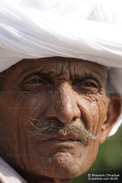 Portrait of a Rajasthani man wearing a white turban