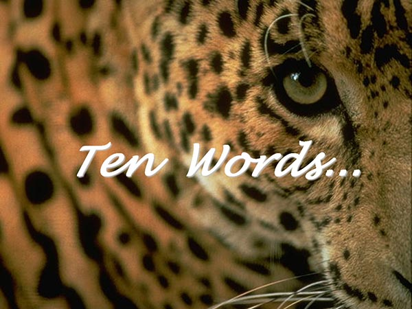 Ten words…