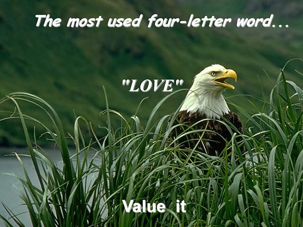 The most used four-letter word - Love - Value it