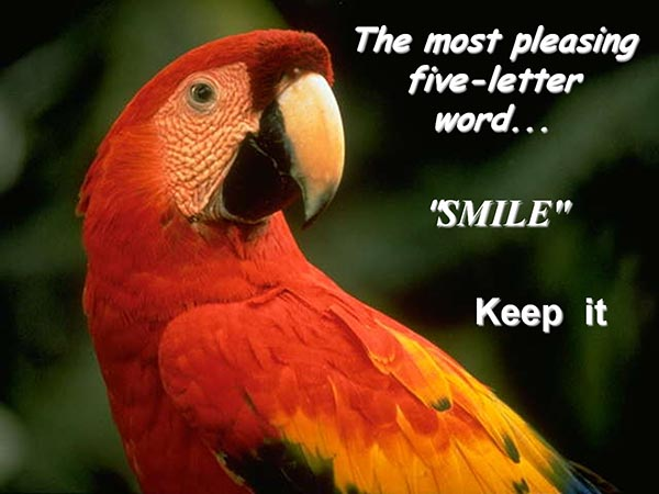 The most pleasing five-letter word - Smile - Keep it