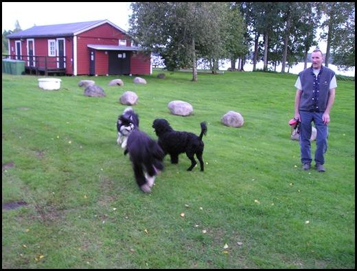 lek med P.vannhund008
