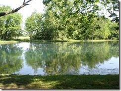 Williams pond