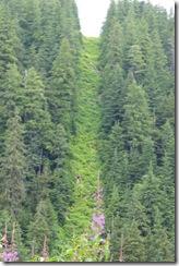 0714-20 US-Canada Boundary