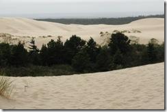 20100729-124 Dunes