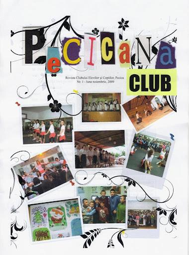 ed2_gimnaziu_Clubul Elevilor si Copiilor-Pecica_ARAD