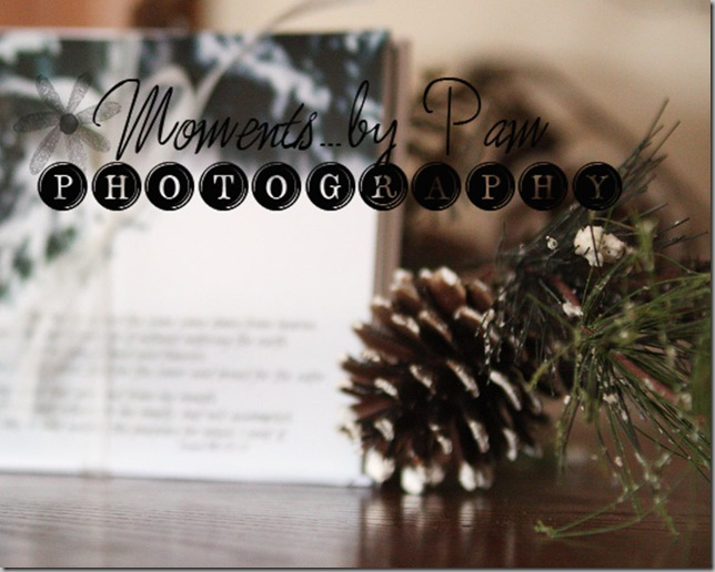 Winter Note cards 010 copy