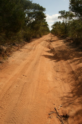 Old Telegraph Track, Cape York