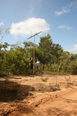 Telegraph Pole, Old Telegraph Track, Cape York