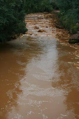 Quunstown River Tasmania Australia