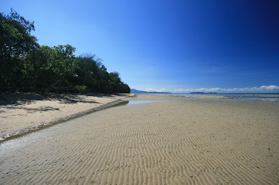 Daintree Rainforest and Great Barrier Reef
