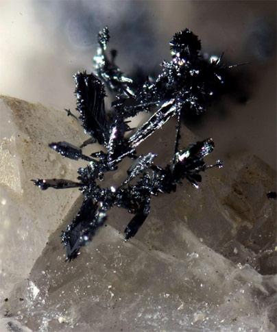Plata·Argentita-Silver·Argentite