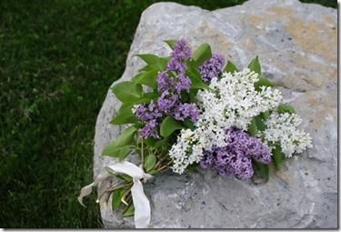 lilacs 5