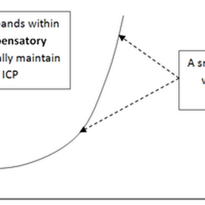 Cerebrospinal fluid (CSF) II