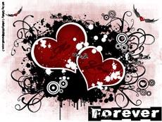 25 44 de imagini pentru desktop ul tau ( Valentines Day )
