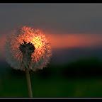Moje zachody słońca