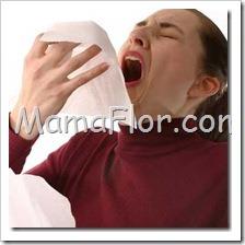 Todo Acerca de las Alergias