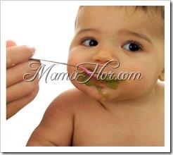 Recetas de las Primeras Papillas para Bebés…