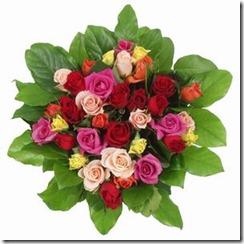 Flores: Las Rosas y su significado
