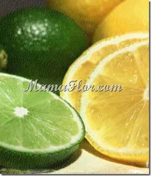 El Limón y sus Beneficios…