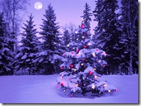Christmas-new-year-wallpapers (32)