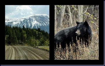 Alaska 20101