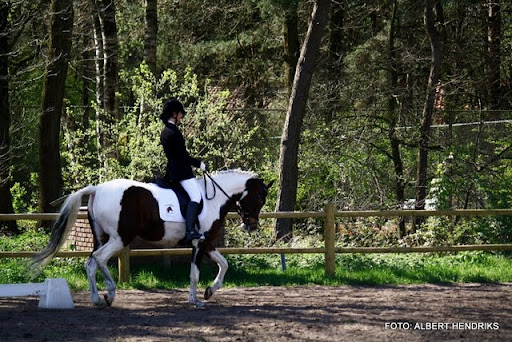 dressuurwedstrijd pony's overloon 09-04-2011 (16).JPG
