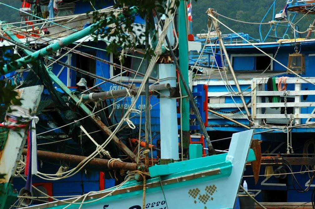 Мешанина снастей тайких рыбацких кораблей в устье реки