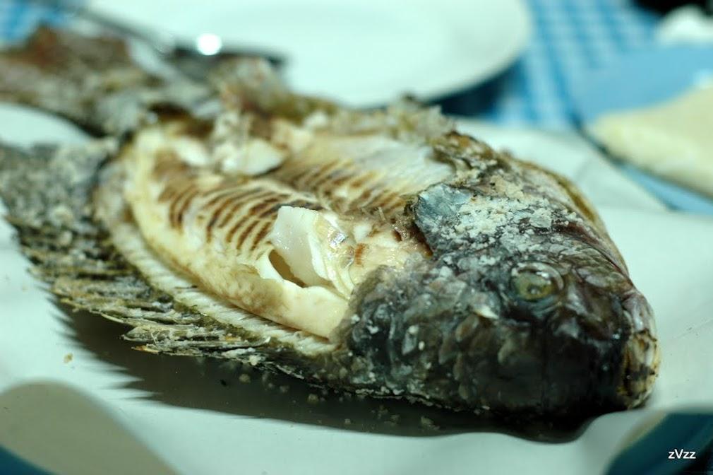 Рыба Пла-Нин