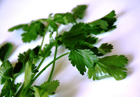 anti aging food, coriander