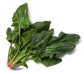 anti aging food, spinach