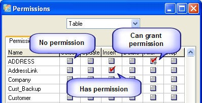 Permission Indicators