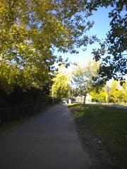 fall-walk1