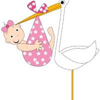 babies-girl-stork.jpg