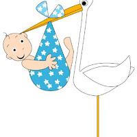 babies-boy-stork.jpg