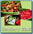 Sensory Bins