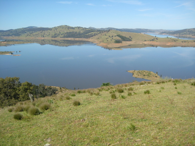 how to fish wyangala dam