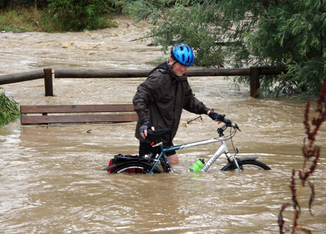 The floodwaters rose too quickly for this cyclist near the Mullum Mullum Creek, in Melbourne's eastern suburbs. Mike Glover / abc.net.au