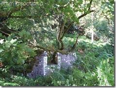 Loch Monzievaird (9)