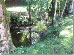Loch Monzievaird (70)