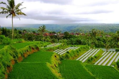 جمال الطبيعة اندونسيا
