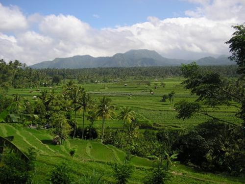 صور الطبيعة في اندونيسيا