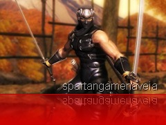 Ninja Gaiden Sigma (2)