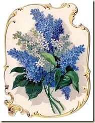 flowers-lilacs-graphicsfairy008bb