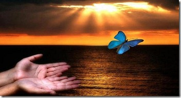 nascersol-maos-mariposa