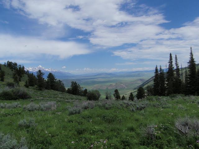 Teton Valley Vacation Rental Victor, Idaho - Jackson Hole