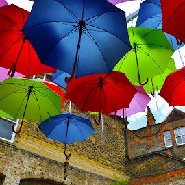 Choose your color by Alberto Schiavo - City,  Street & Park  Street Scenes (  )