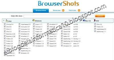 Visualización web en varios navegadores