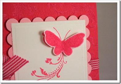 Butterfly CU Butterfly