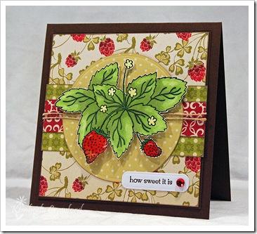 SRStrawberries